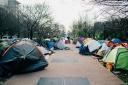 Увидеть Париж и ужаснуться: как мигранты разрушают культурный центр Европы